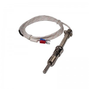 New Delivery for Greenhouse Temperature Controller - Pressure Spring Thermocouple – Taiquan Electric